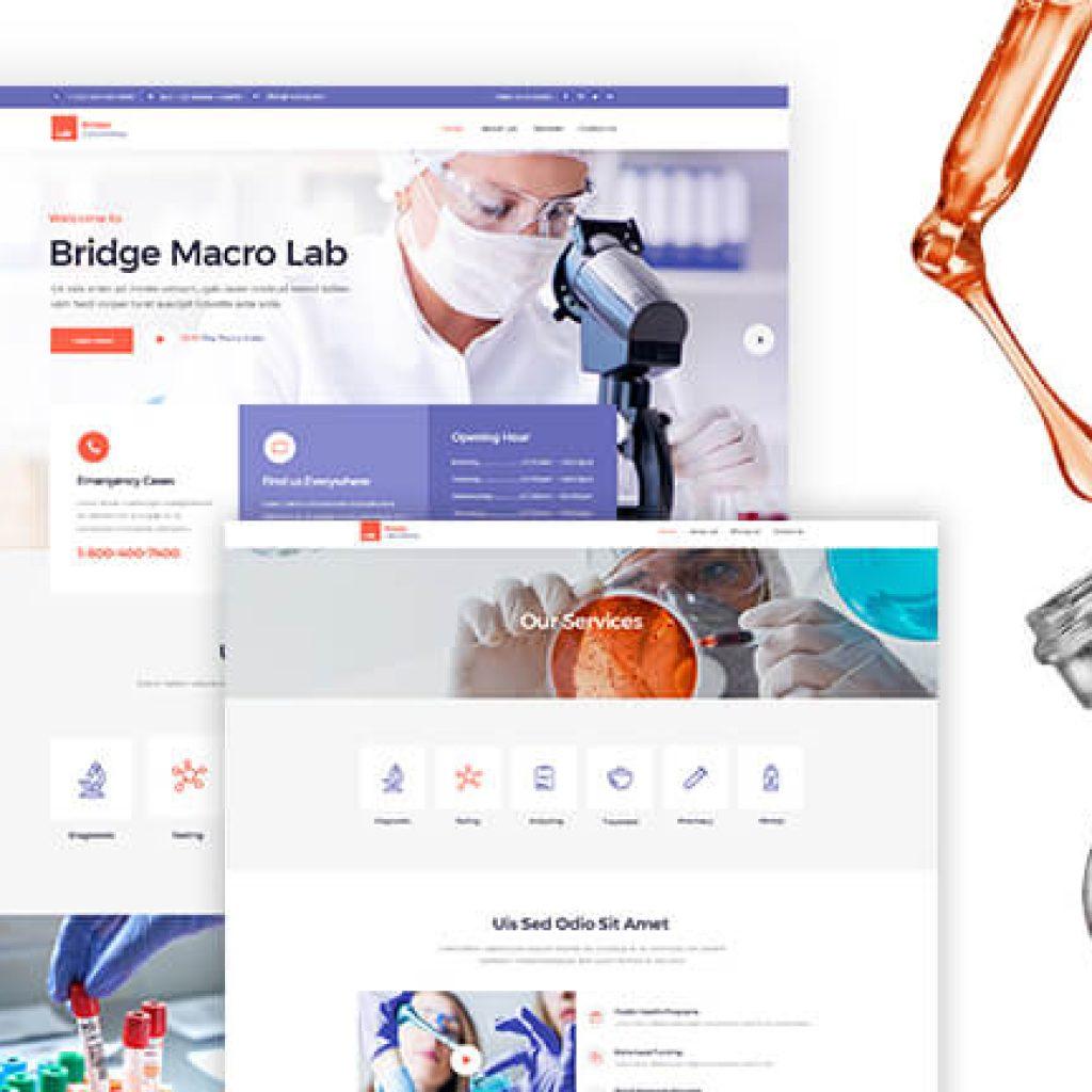 dental website Design marketing